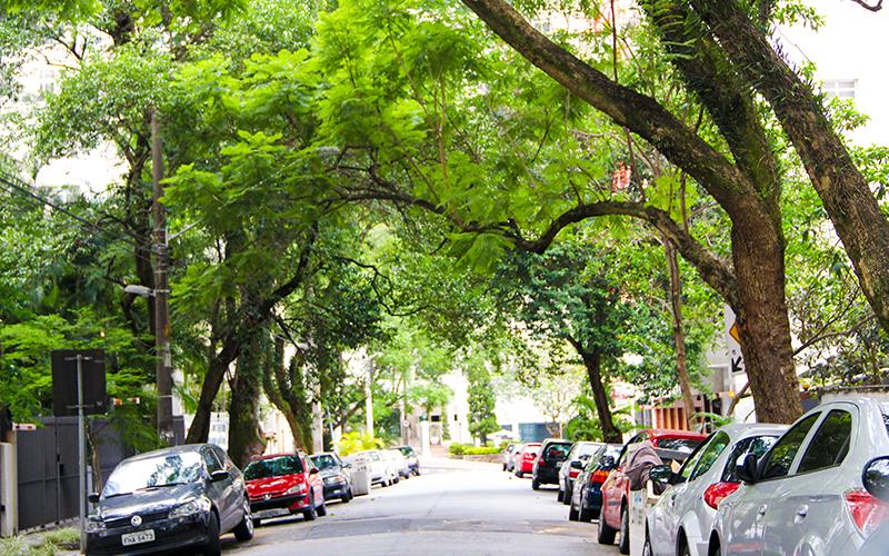 Ruas-residenciais-de-Higienópolis