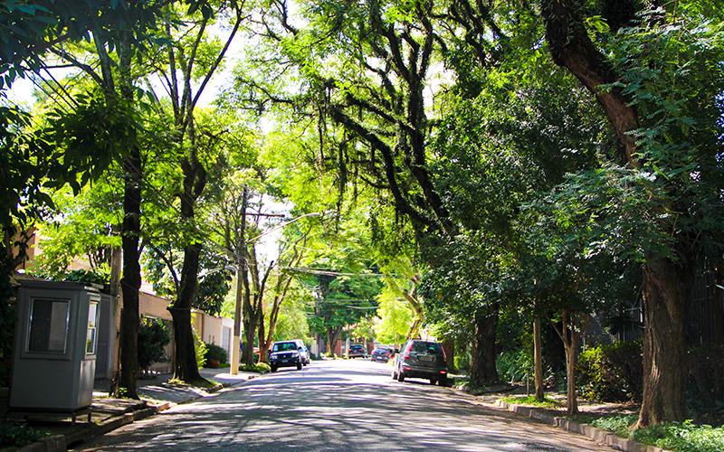 Ruas-residenciais-em-Pinheiros