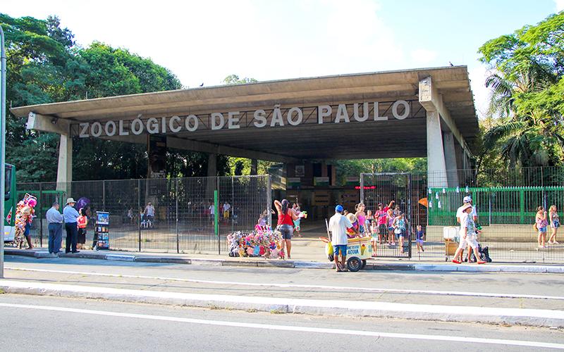 Zoo-de-SP